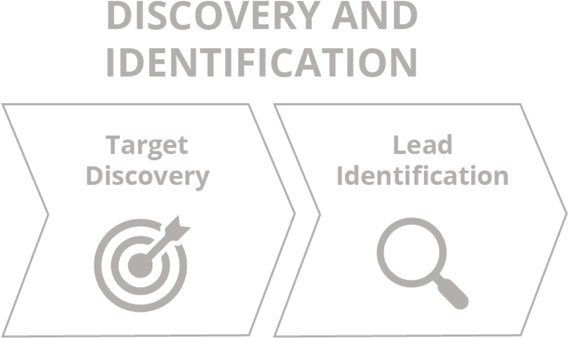 Discovery_And_Identification_grey@3x