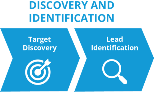 Discovery_and_Identification@3x-2