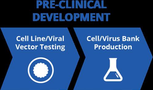 Pre-Clinical_Development@3x