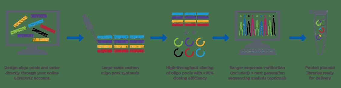 Oligo_HT_Cloning_LP_Workflow