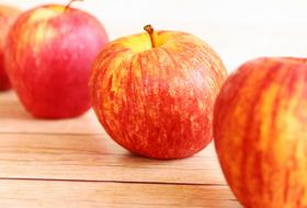 web-citation_apple-RNA-Seq