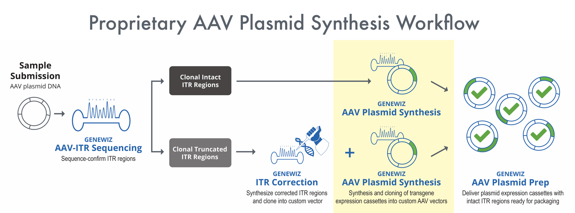 GS_AAV_Synthesis_Workflow_April16_2020_option2-1